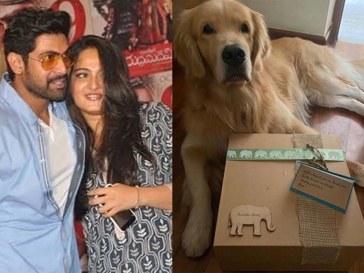 Anushka Shetty receives gift from Rana Daggubati