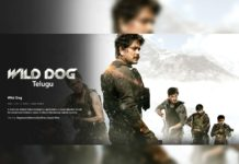 Nagarjuna Wild Dog streaming on Netflix