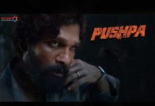 Unstoppable likes for Pushpa teaser 1 Million on YouTube