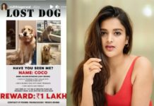 Nidhhi Agerwal pet missing post viral