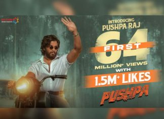 Pushpa teaser - Introducing Pushpa Raj creates another record