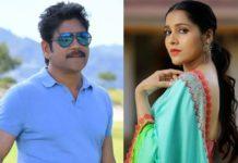 Rashmi Gautam key role in Nagarjuna and Praveen Sattaru film?