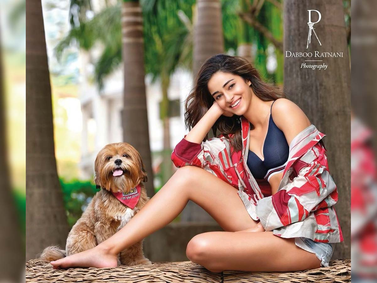 Liger girl poses with a dog for Dabboo Ratnani Calendar 2021