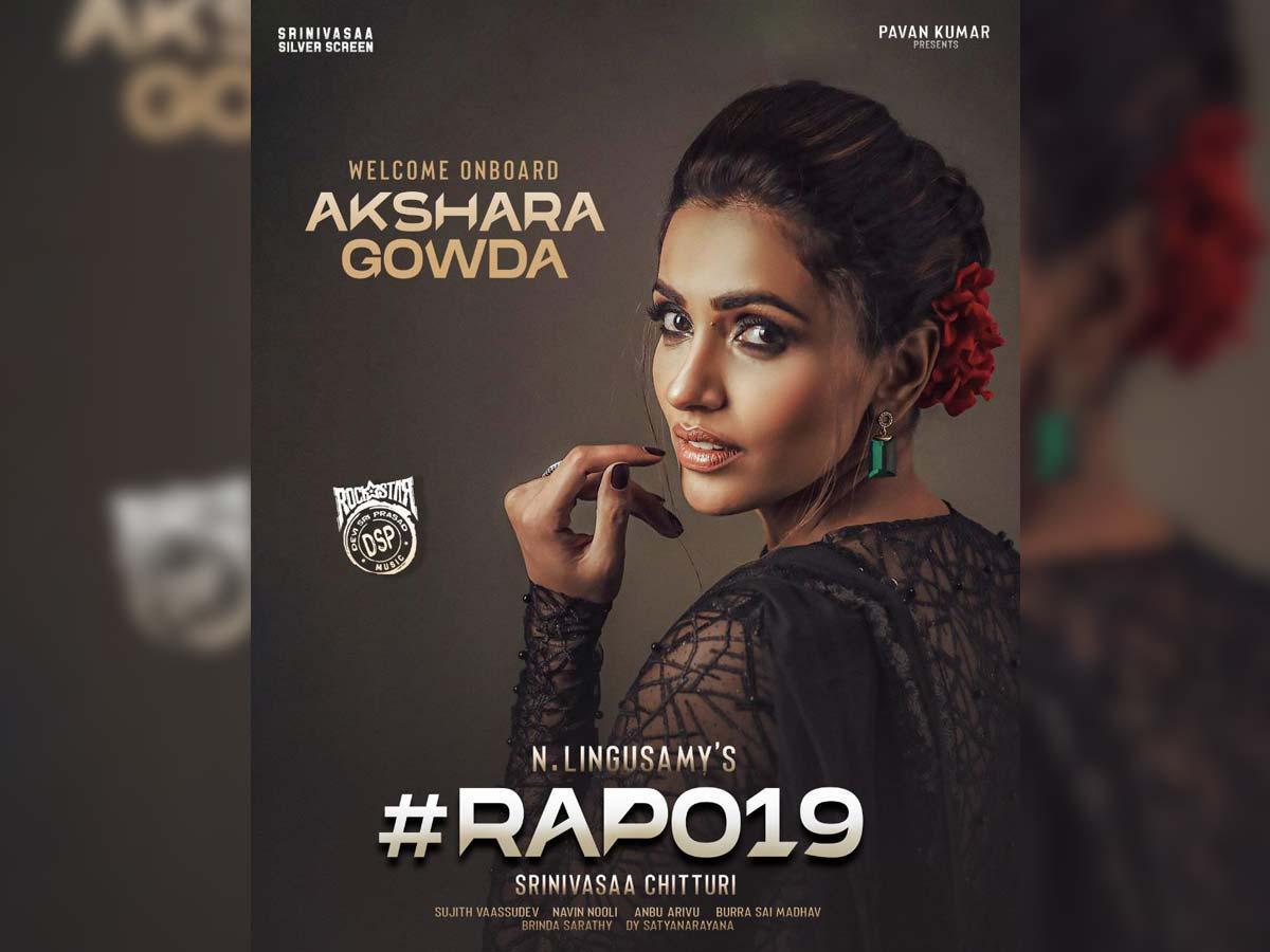 Akshara Gowda in Ram Pothineni and Lingusamy film
