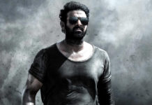 Is this the story of Prabhas Salaar